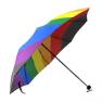 DT_umbrella